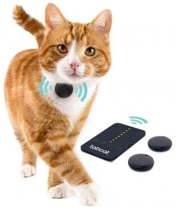 collier chat gps